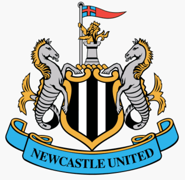 Read more about the article Top 5 FPL picks – Newcastle