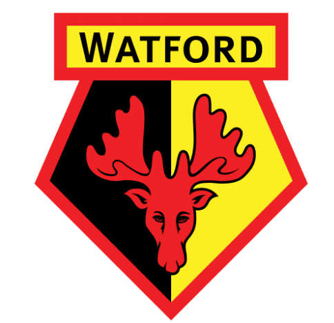 Read more about the article Top 5 FPL picks – Watford